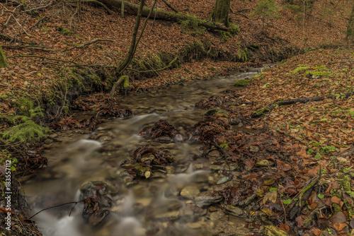 Photo  Bansky creek in autumn morning near Spania Dolina