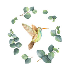 NaklejkaWatercolor vector wreath with green eucalyptus leaves and Hummingbird.