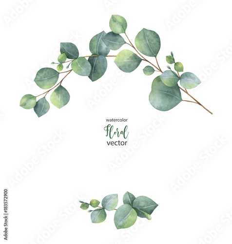 watercolor vector wreath with green eucalyptus leaves and branches kaufen sie diese