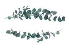 Decorative Eucalyptus Leaves Wave Arrangements