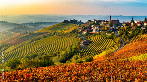 Photo Stands Vineyard Italian village from the Langhe region in Italy