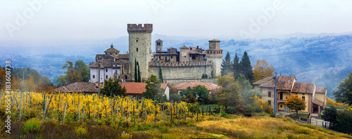 Medieval towns and castles of Italy -Vigoleno with vineyards in Emilia-Romagna Canvas