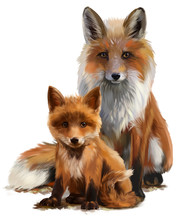 Fox Mom And Cub Watercolor Pai...