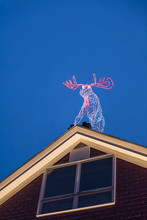 Illuminated Moose Decoration W...