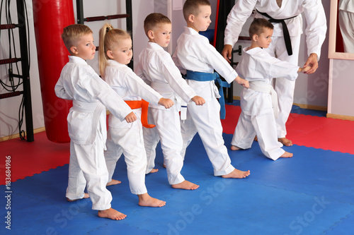 Photo Stands Martial arts Little children practicing karate in dojo