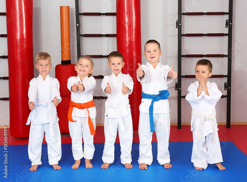 Photo Stands Martial arts Little children wearing karategi in dojo