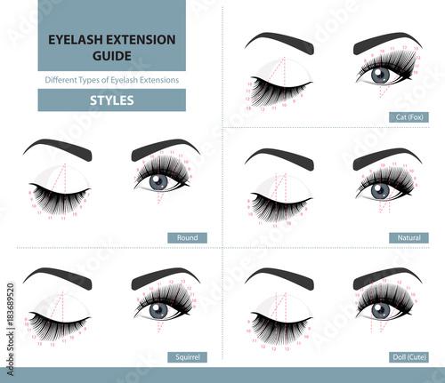 Fotografie, Obraz Different types of eyelash extensions