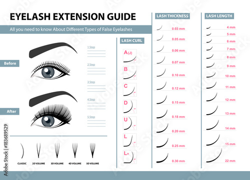 Fotografie, Obraz  Eyelash extension guide