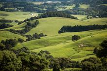 Green Farming Landscape Rolling Hills