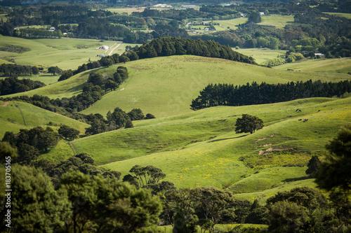 Fotografia green farming landscape rolling hills