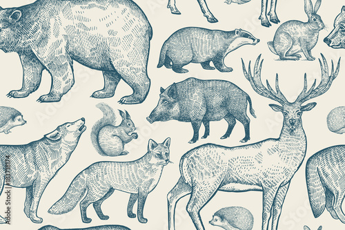 fototapeta na drzwi i meble Seamless pattern with animals.