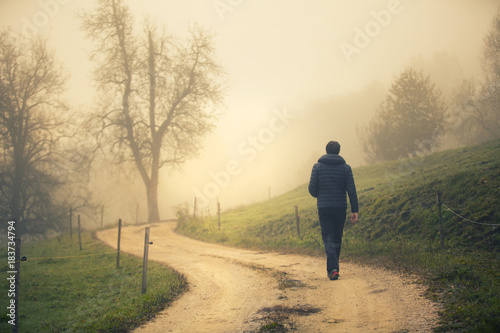 Fotografie, Obraz  Back view of a person walks alone on morning countryside road.
