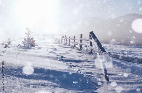 Fotobehang Wit winter landscape trees and fence in hoarfrost, background with some soft highlights and snow flakes. Happy New Year