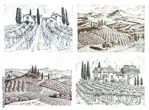 Foto op Aluminium Wit rustic vineyard. rural landscape with houses. solar tuscany background. fields and cypress trees. harvesting and haystacks. engraved hand drawn in old sketch and vintage style for label.