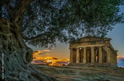 Photo Tempio delle Concordia, Valle di Templi, Valley of Temples, Agrigento, Sicily
