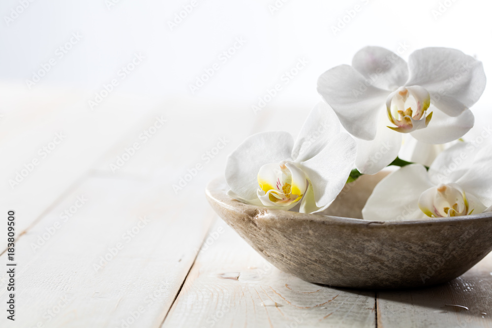 fragrance still life with pure white orchids in stone cup