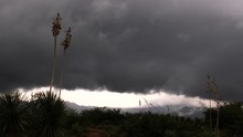 Yucca Storm Time Lapse