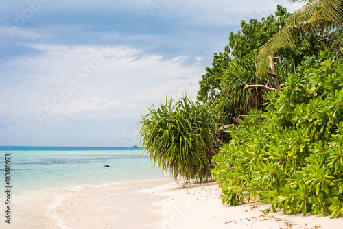 Spoed Foto op Canvas Natuur View of the sandy beach, Maldives, Indian Ocean. Copy space for text.