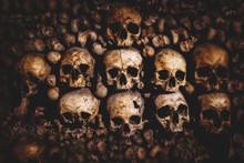 Skulls And Bones In Paris Cata...