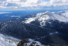 Vista From Mt Washburn, Yellow...