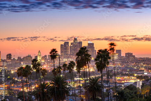 Foto op Canvas Stad gebouw Beautiful sunset of Los Angeles downtown skyline and palm trees in foreground