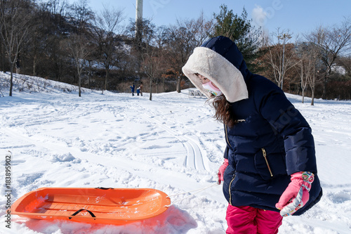 눈 덮인 숲속에서 눈썰매를 끌고가는 여자아이 Poster