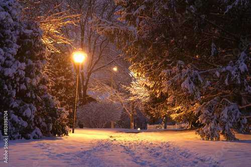 Beautiful winter night background. Beautiful winter evening landscape with footprints on a covered by fresh snow alley and shining lanterns in a park.