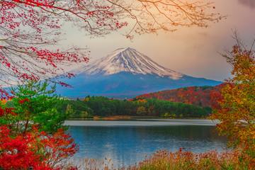 FototapetaMount Fuji and Lake Shojiko in Japan.