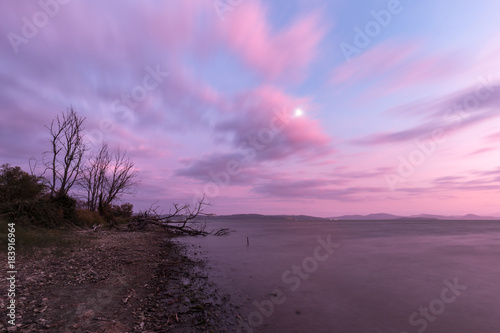 Fotobehang Draw View of a lake shore at sunset, with plants, trees,beautiful purple colors on clouds and water, and moon hidden between the clouds