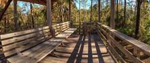 Bench On A Boardwalk Overlooks Wetlands In The Corkscrew Swamp