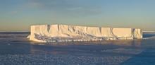 Icebergs In The Davis Sea,Anta...