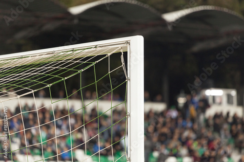 Fotografia, Obraz  Goal post with soccer fans in the background