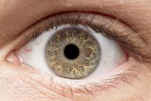 Macro Photo Of Human Eye, Iris...