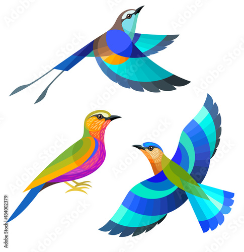 Stylized Birds - Racquet-tailed, Purple and Indian Roller Wall mural