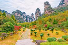 Zhangjiajie Forest Park.