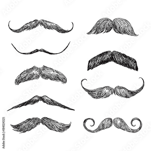 Fotografie, Obraz Set of realistic hand drawn vector mustache in black and white illustration