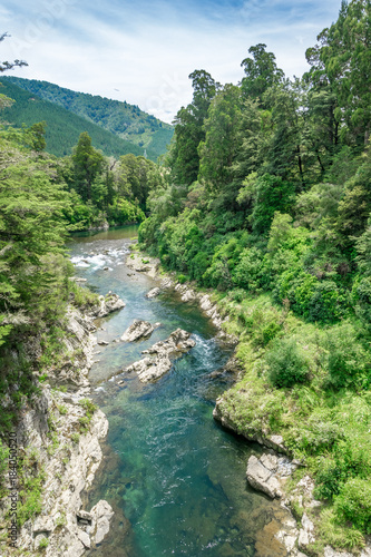 Beautiful green and clear pelorus river, known from the movie hobit Canvas Print