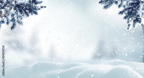Fotobehang Wit Christmas background with fir tree branch.Winter landscape