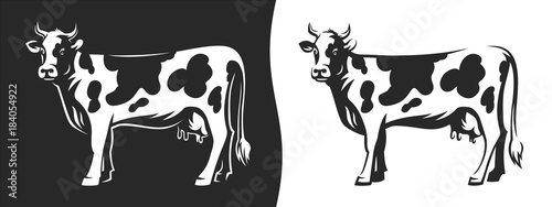 Cow with horns - Illustration on a dark and light background Canvas Print