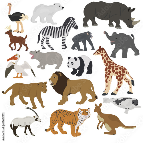 Fototapeta Collection of African animals on a white background