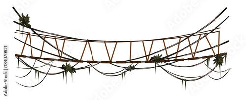Rope bridge with lianas Wallpaper Mural