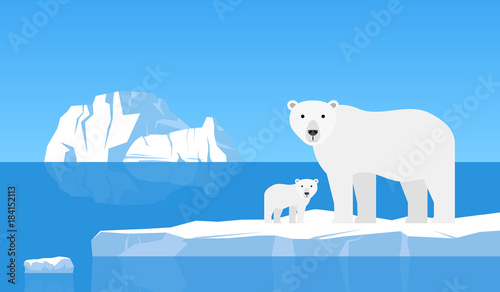 Photo polar bear with cub on drift ice.arctic  landscape