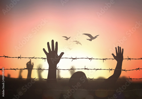 Cuadros en Lienzo International migrants day concept: Silhouette refugee hands raising and barbed wire on autumn sunset background