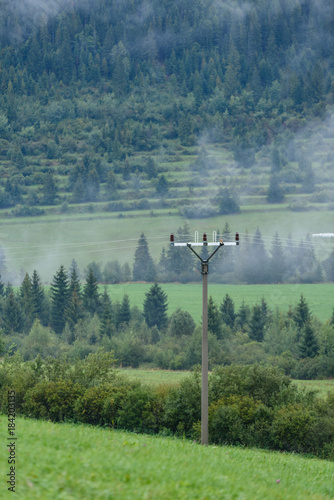 Tuinposter Groen blauw panoramic view of misty forest in mountain area with electricity poles and bird hawk