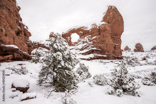 Fotografie, Obraz  Utah Arches park in the winter with snow on the ground
