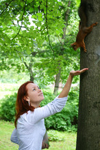 Red-haired Woman Feeding Red S...