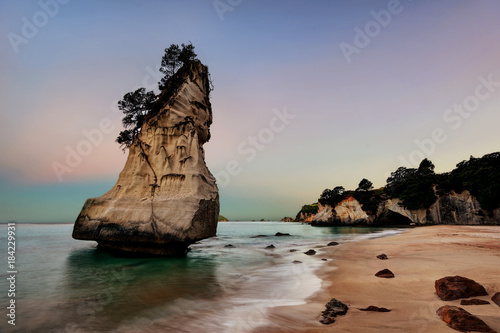 Tuinposter Cathedral Cove Cathedral Cove Coromandel Peninsula New Zealand