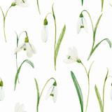 Akwarela kwiatowy wektor wzór - 184243741
