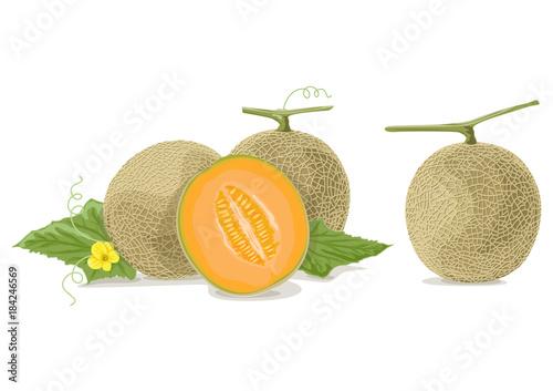 Carta da parati Cantaloupe melon slices AI