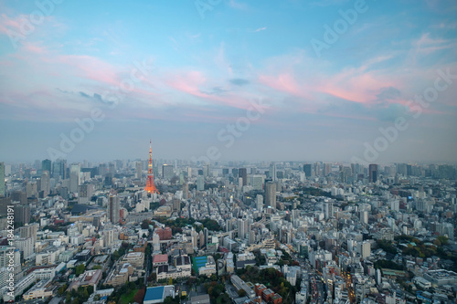 Japan cityscape Tokyo tower light up twilight time famous tower iconic landmark Canvas Print
